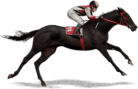 bookie betting pools mime horse 2